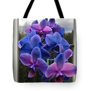 Black Sapphire Orchids  Tote Bag by Aaron Berg