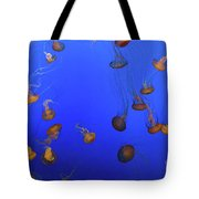 Black Sea Nettle Jellyfish - Monterey Tote Bag
