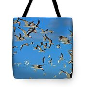 The Black Skimmers Tote Bag