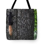 Black Squirrel With Blond Tail Two  Tote Bag
