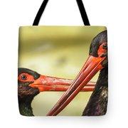 Black Storks Jerez De La Frontera Spain Tote Bag