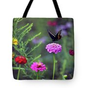 Black Swallowtail Butterfly In August  Tote Bag