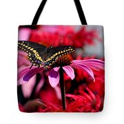 Black Swallowtail Butterfly With Coneflowers And Bee Balm Tote Bag