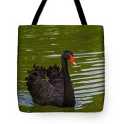 Black Swan II Tote Bag