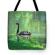 Black Swan Swim In A Pond Tote Bag