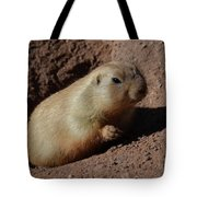 Black Tailed Prairie Dog Climbing Out Of A Hole Tote Bag