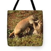 Black-tailed Prairie Dogs Wrestling Around Tote Bag