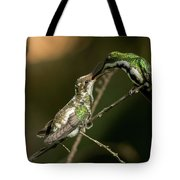 Black-throated Mango With Her Baby Hummingbird. Tote Bag