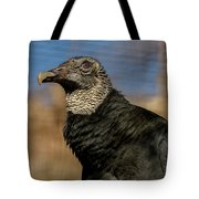 Black Vulture 1 Tote Bag