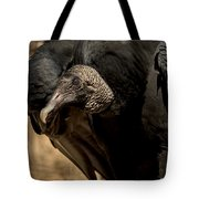 Black Vulture 2 Tote Bag