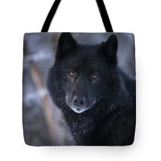 Black Wolf Portrait Tote Bag