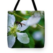 Blackberry Bzzzzz Tote Bag