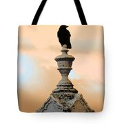 Blackbird And A Coral Sky Tote Bag