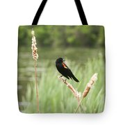 Blackbird Fly Tote Bag