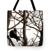 Blackbird In A Tree Tote Bag