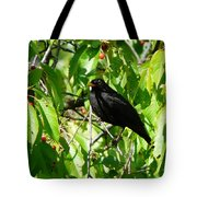 Blackbird In The Cherry Tree Tote Bag