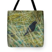 Blackbird In The Undergrowth Tote Bag