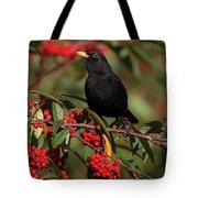 Blackbird Red Berries Tote Bag