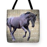 Blackhorse Poetry Tote Bag