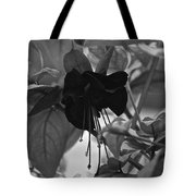 Blackie Fushia Tote Bag