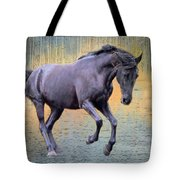 Blacks Danse Tote Bag
