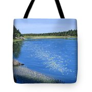 Blackstone Bog Tote Bag by Kenneth M  Kirsch