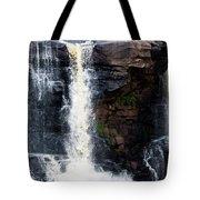 Blackwater Falls #5 Tote Bag