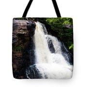 Blackwater Falls #6 Tote Bag