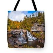 Blackwater Falls Tote Bag