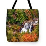 Blackwater Falls Wv Tote Bag