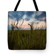 Blades Of Sunset Tote Bag