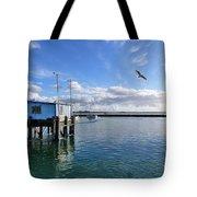Blaine Crab Square Crop Tote Bag by Christine Burdine
