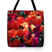 Blankets Of Tulips Tote Bag