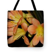 Blast Of Sunshine Tote Bag