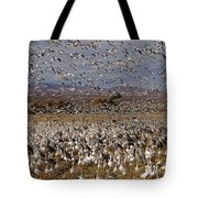Blast Off Bosque Del Apache Tote Bag