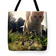 Blaze The Cat Tote Bag