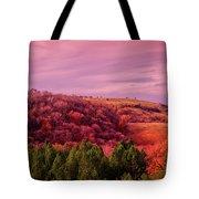 Blazing Autumn Tote Bag