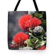 Blazing Blooms Of Ohia Flowers Tote Bag