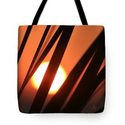 Blazing Sunset And Grasses Tote Bag