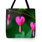 Bleeding Heart 2 Tote Bag
