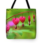 Bleeding Hearts - Lamprocapnos-spectabilis Tote Bag