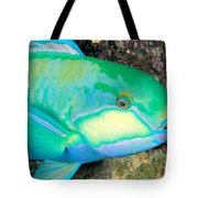 Bleekers Parrot Fish Tote Bag