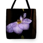 Blighted By Winter - 2 Tote Bag