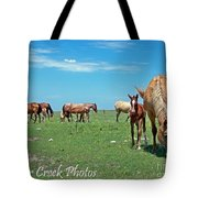 Blondes, Brunettes And Redheads Tote Bag