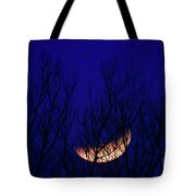 Blood Moon And Winter Trees Tote Bag