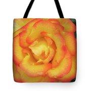 Blood Orange Rose Tote Bag