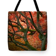 Blood Red Autumn Tree Tote Bag