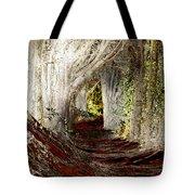 Blood Redwoods Tote Bag