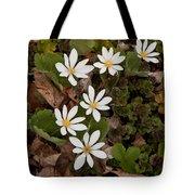 Bloodroot Wildflowers #1203 Tote Bag