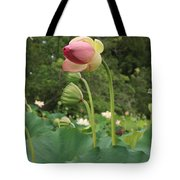 Bloom Among The Pods Tote Bag